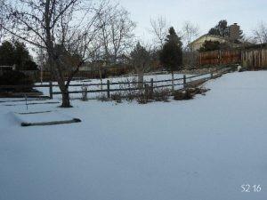 285_snow.jpg